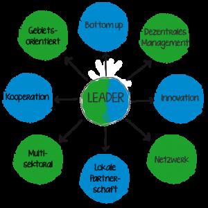 Leader-Ansatz